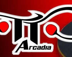 TENNISTAVOLO 11 TORINO ARCADIA PING PONG (31)