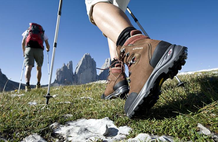 Fiori d'alpeggio a Castelmagno