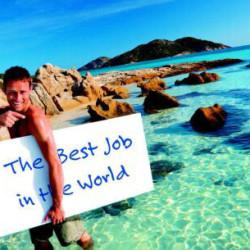 lavoro-più-bello-del-mondo