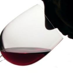 corso-degustazione-vino
