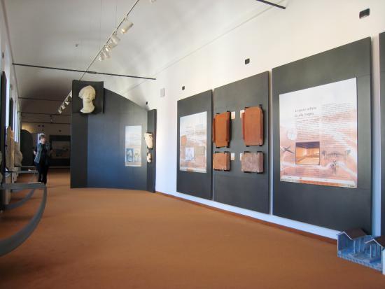 Museo-Federico-Eusebio-Alba
