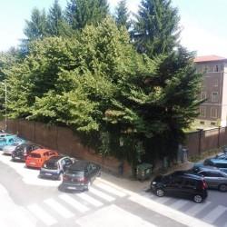 3 Locali Zona Viale Angeli €140,000 - Cuneo Via Mons....