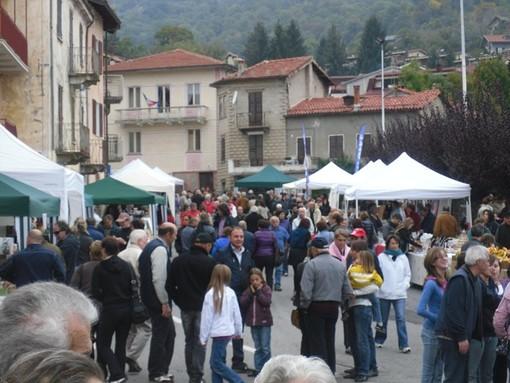VIOLA: Colori e sapori d'autunno 2019 - Gran Castagnata