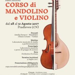 mandolino-violino