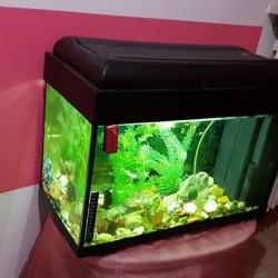 Vendo Acquario Completo Poseidon 60/70 Litri ,con Tutti Accesori €80...