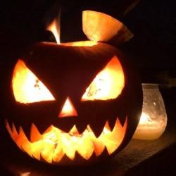 Zucche per Halloween FREE - Busca, Piemonte Vendo zucche per...