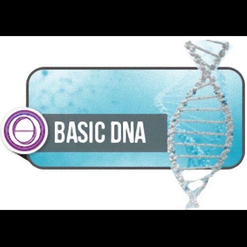 CORSO DNA BASE