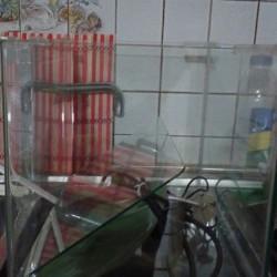 Teca x tartaruga €70 - Sommariva del Bosco Teca x...
