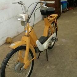 Bici e ciclomotori €1 - Madonna Pilone Cotattare in privato