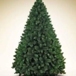 Albero di Natale alto 2,10 metri €30 - Roreto, Piemonte,...