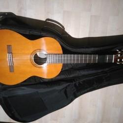 Chitarra+custodia €110 - Bra Vendo chitarra+custodia mai utilizzata causa errato...