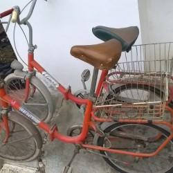Biclette, tipo graziella