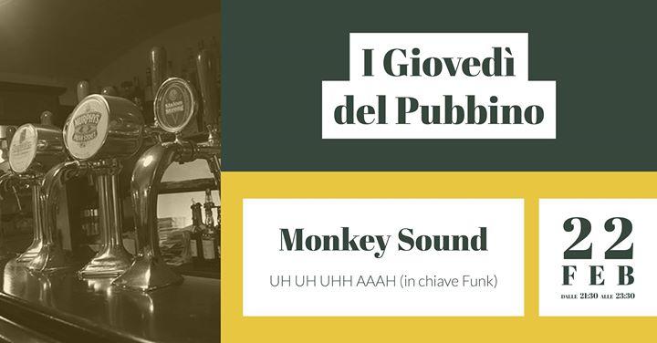 """Monkey Sound - Live at """"I Giovedì del Pubbino"""""""