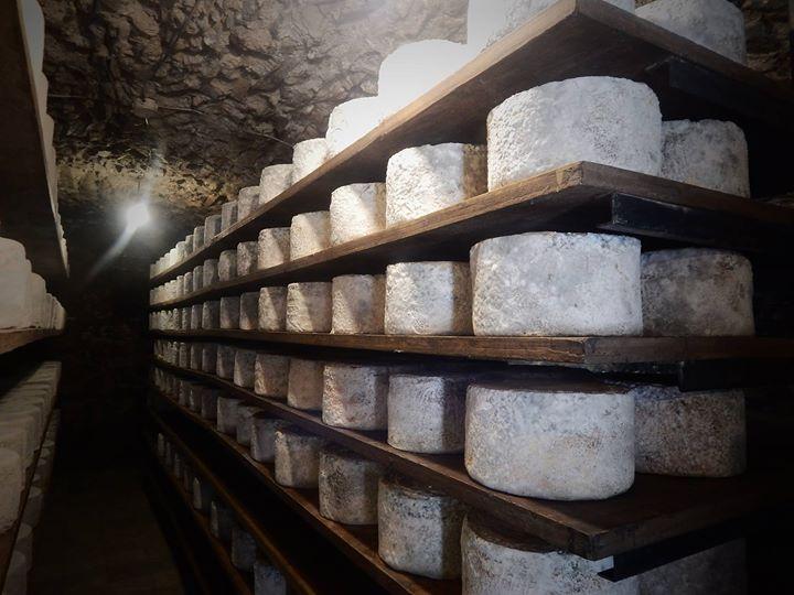 Corso assaggiatori di formaggi