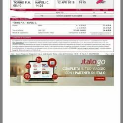 Vendo biglietto treno alta velocità solo andata Torino/Napoli giorno 12...