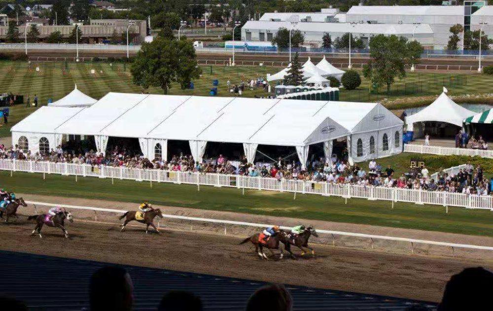 10x20m cavalli